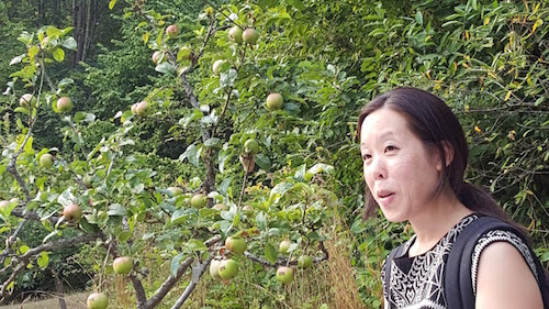 Shin Yu Pai, reading at her *HEIRLOOM* exhibit in Carkeek Park earlier this year.